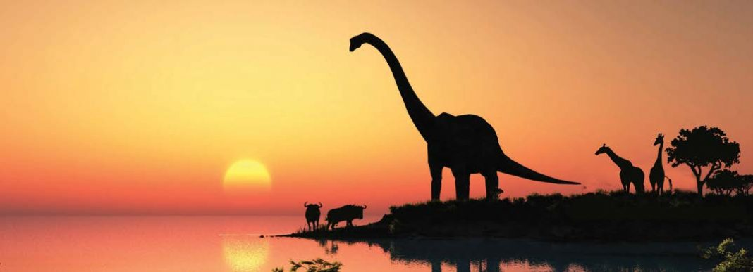 FAQ Image Dinosaurs Day 6