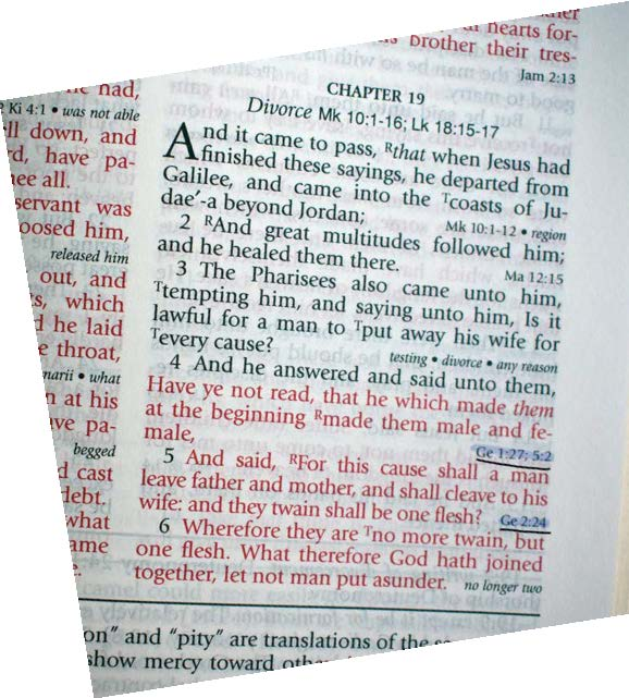 Why do Christians harp on homosexuality when Jesus never mentioned it?